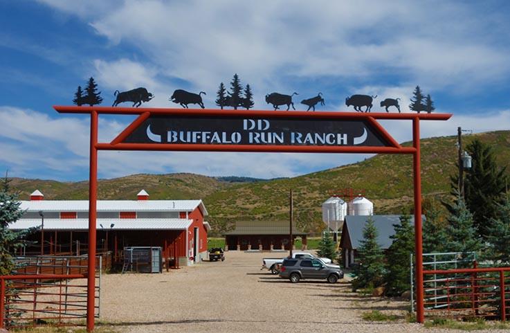 Contact Buffalo Run Ranch